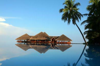 http://www.maldivestourism.net/